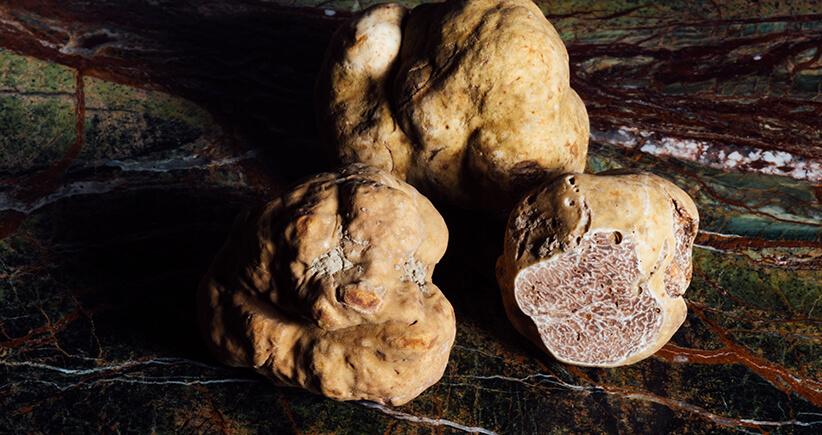 Les 5 choses à savoir sur la truffe